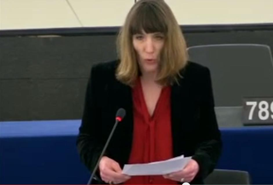 Christine Revault D'Allonnes Bonnefoy appelle au contrôle du respect des critères de Copenhague