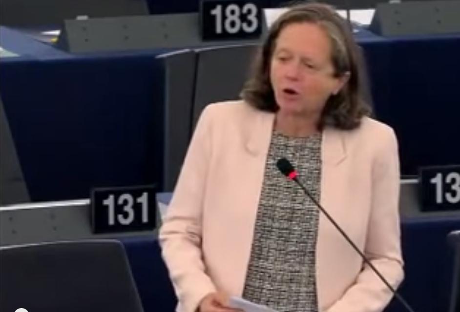Pervenche Berès : «Syrie : l'Europe donne l'impression de subir et non pas de maîtriser»