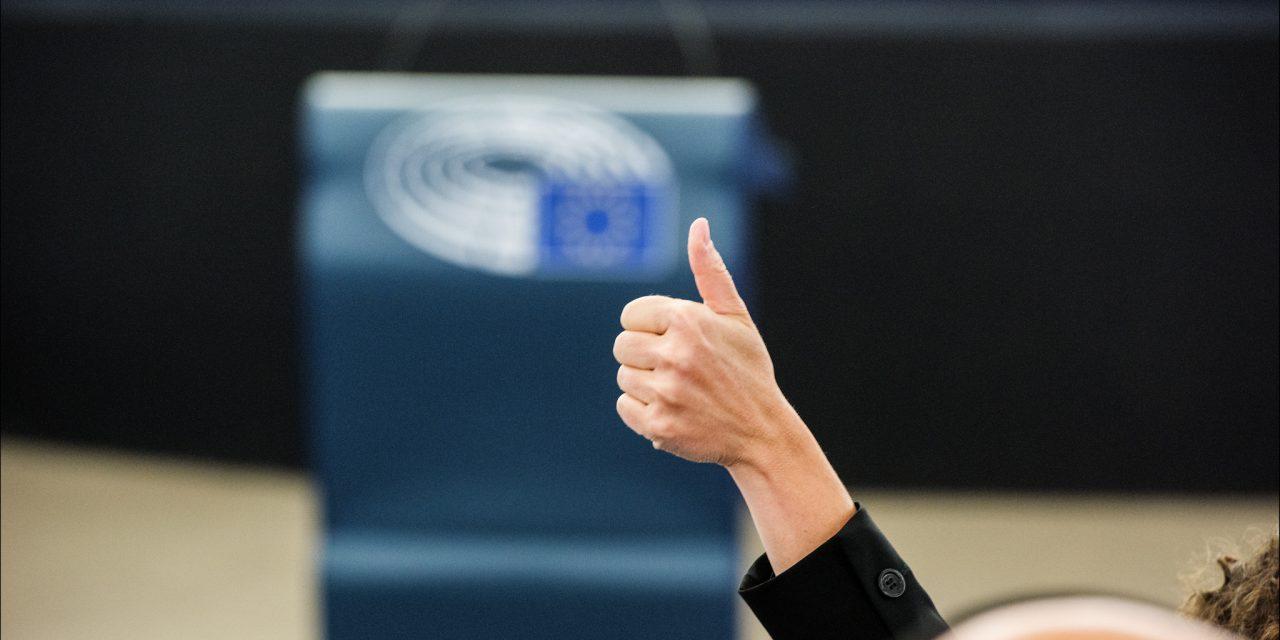Tous les Européens ont droit au respect de la démocratie
