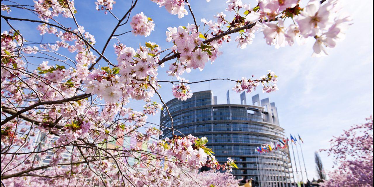 Comme la France, l'Union européenne va interdire le bisphénol A