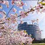 Droit d'auteur : l'Europe défend la démocratie face aux GAFA
