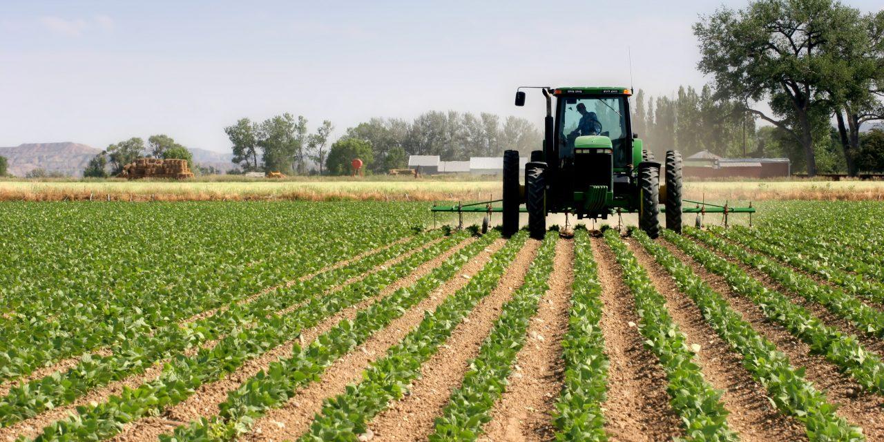 Pour reconquérir la biodiversité, les socialistes veulent interdire l'usage de pesticides sur les surfaces d'intérêt écologique