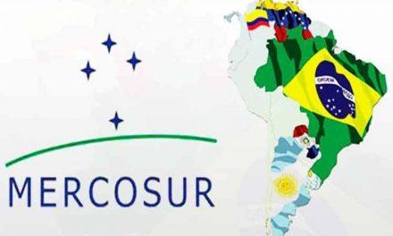 Accord commercial avec le Mercosur : nous appelons à la suspension des négociations